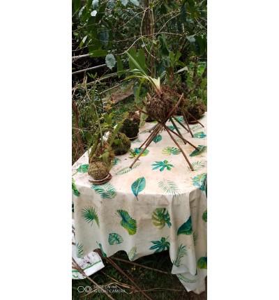 Kokedamas posés zerbe de l'eau et plantes à fleurs